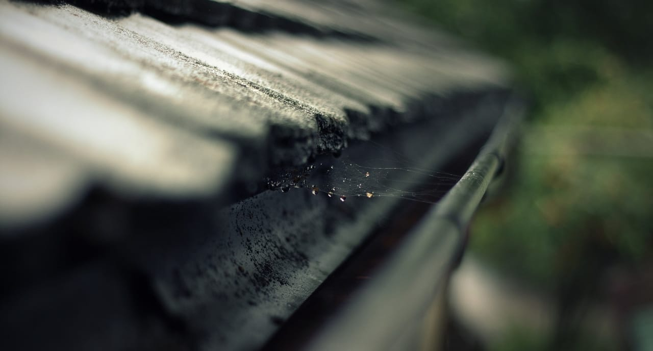 roof-gutter-with-spider-web