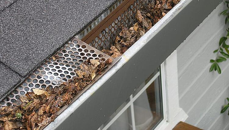 debris filled gutters