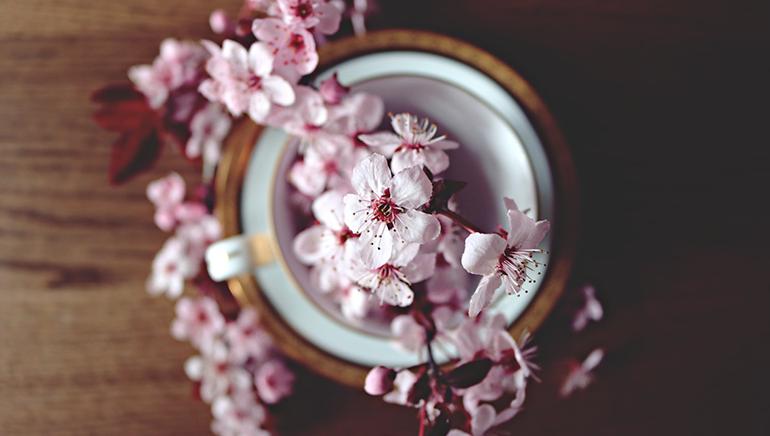 spring-maintenance-checklist.png